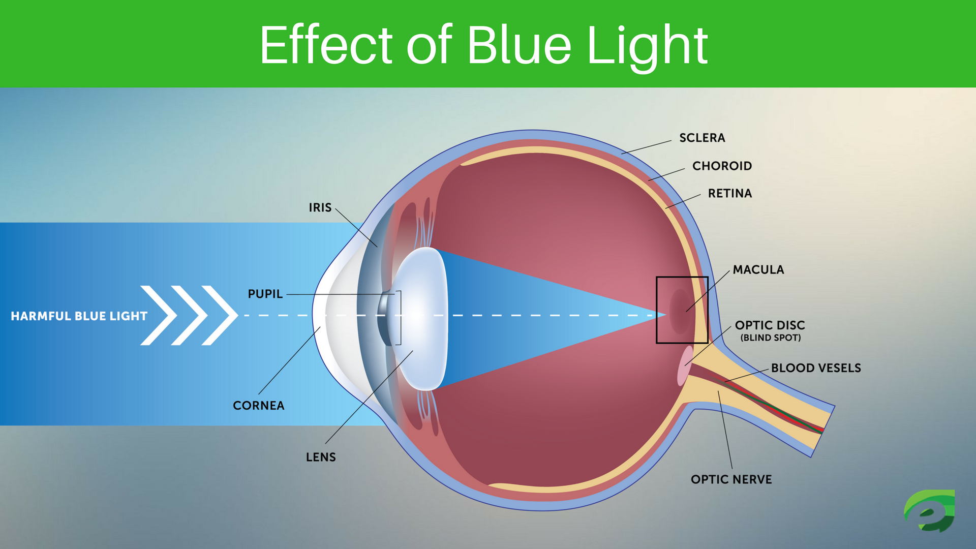 Effect of Blue Light - Eye Protection Apps