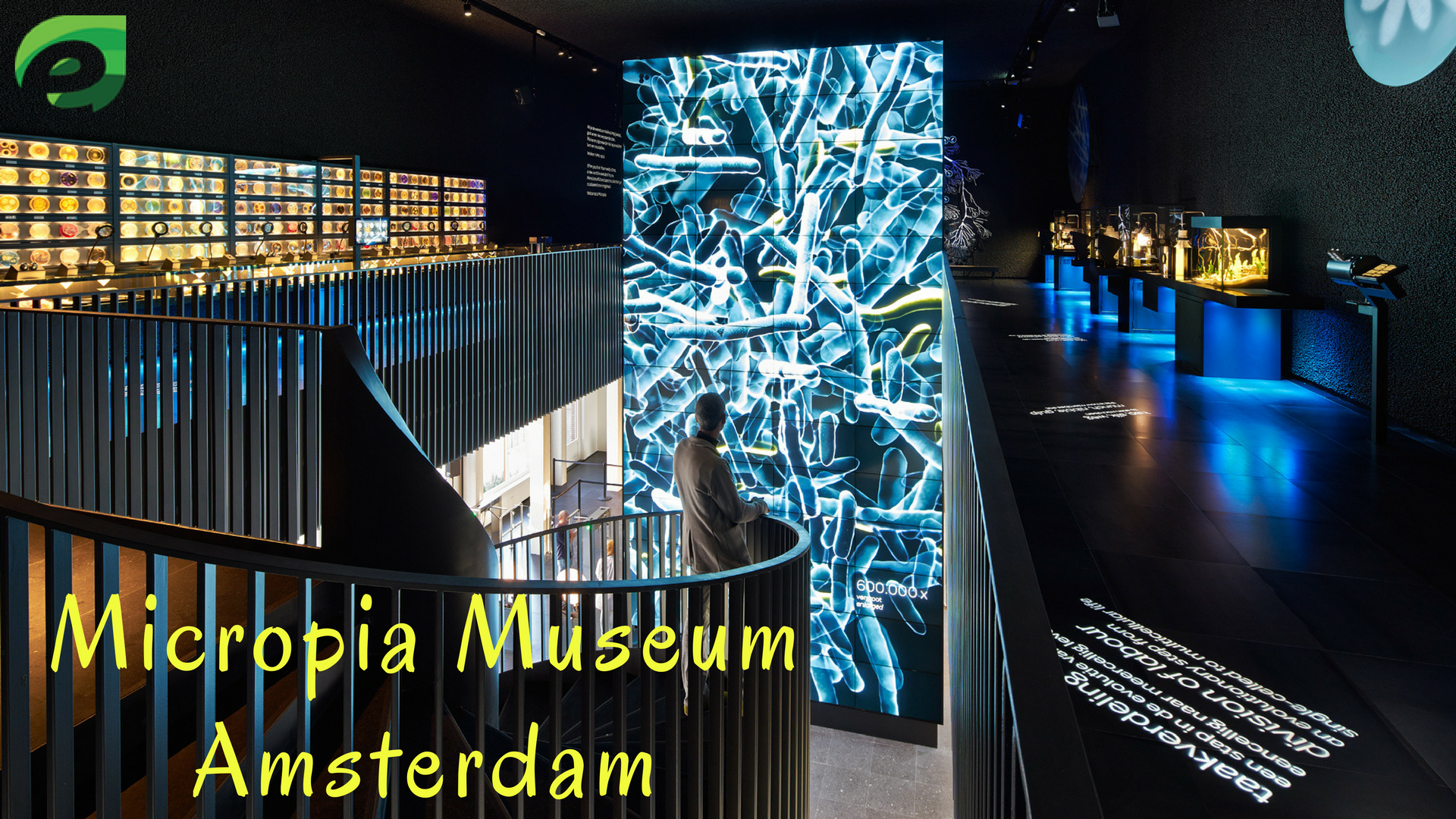 16 Places To Visit In Amsterdam- micropia