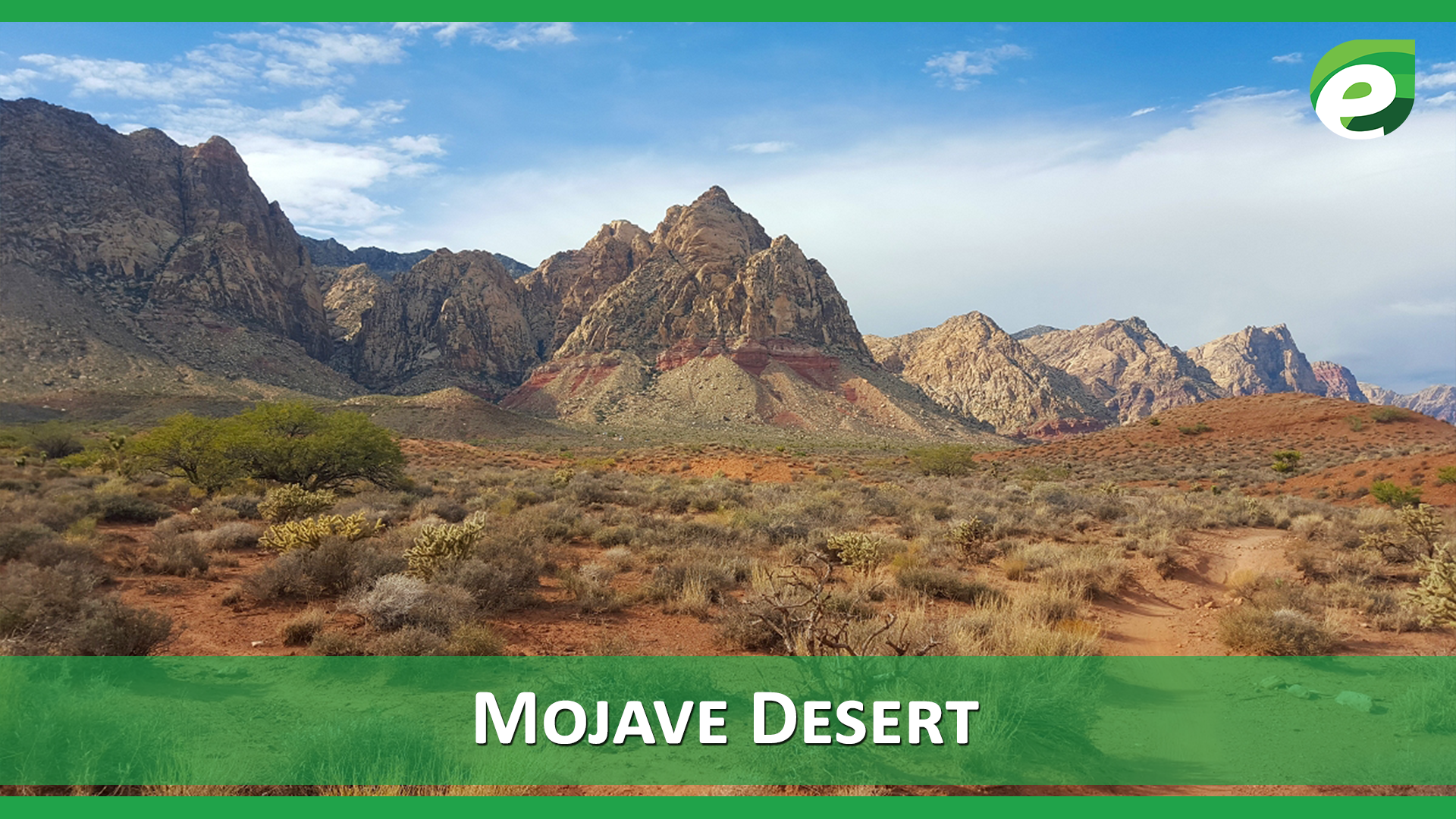 Hottest Deserts of the World- Mojave Desert