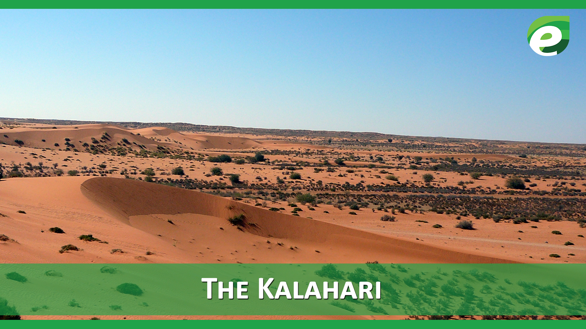 Hottest Deserts of the World- The Kalahari