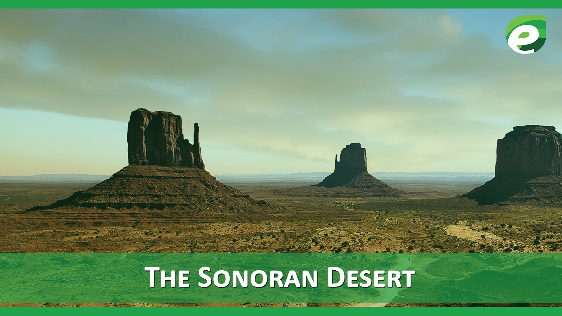 Hottest Deserts of the World- Sonoran desert